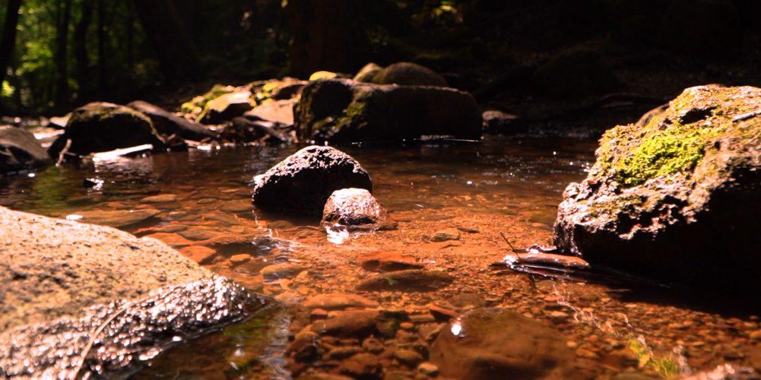 Bükkös-patak és Dömörkapu: Ámulatba ejtő ahogy a fény a vízen táncol